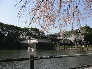 kitanomaru10-50407